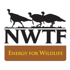 Energy for Wildlife
